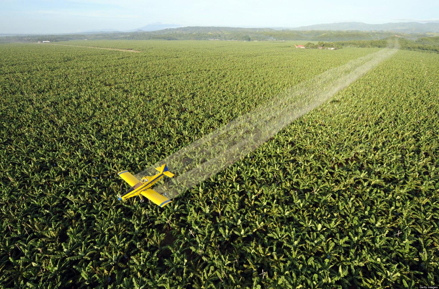 Topul produselor pline de pesticide