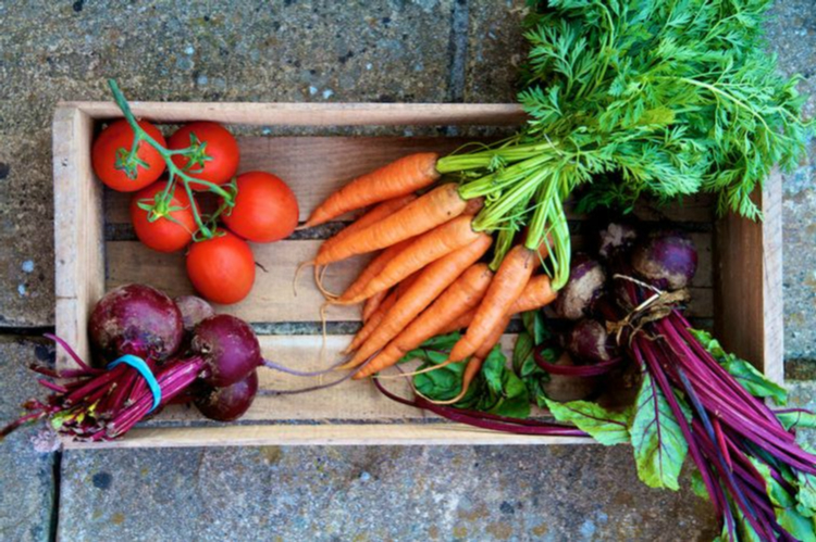 5 Fructe şi legume care luptă împotriva cancerului